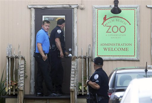 Zoo Tiger Attack_116458