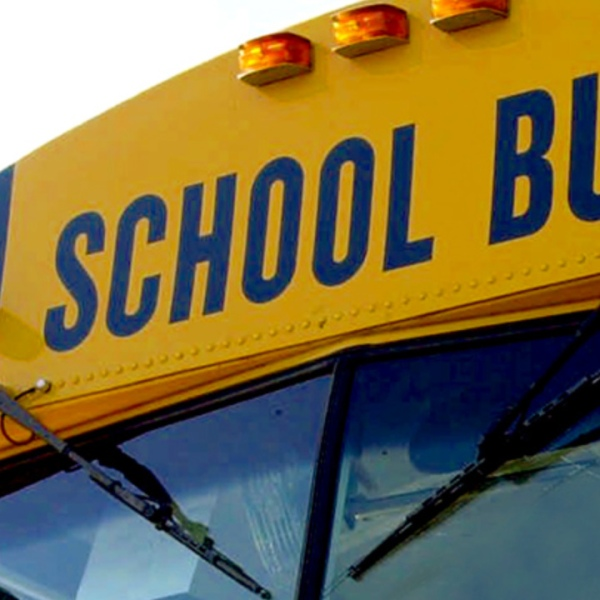 generic school bus_174448