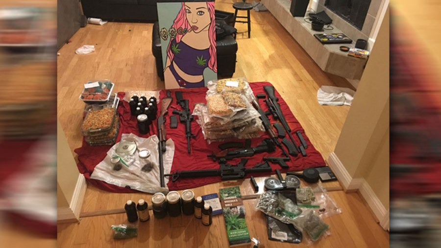 Police bust nets pot, weapons, cash and best-selling book