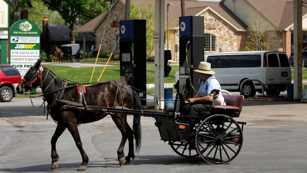 amish-horse-drawn-buggy_295451
