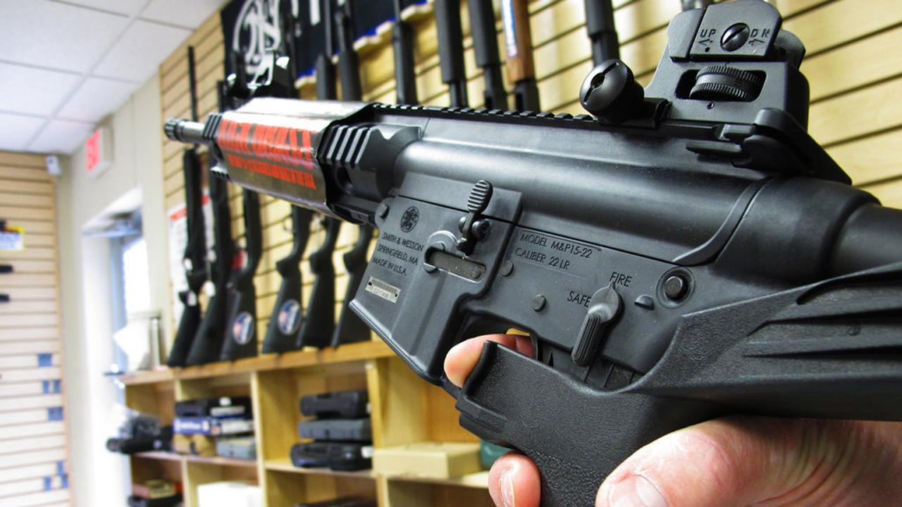 Semiautomatic rifle_355558