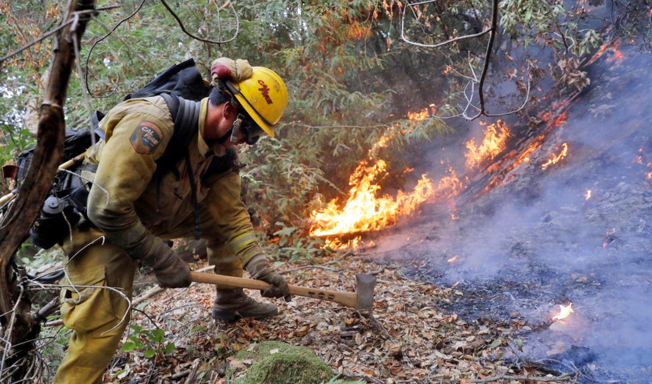 wildfire_358998