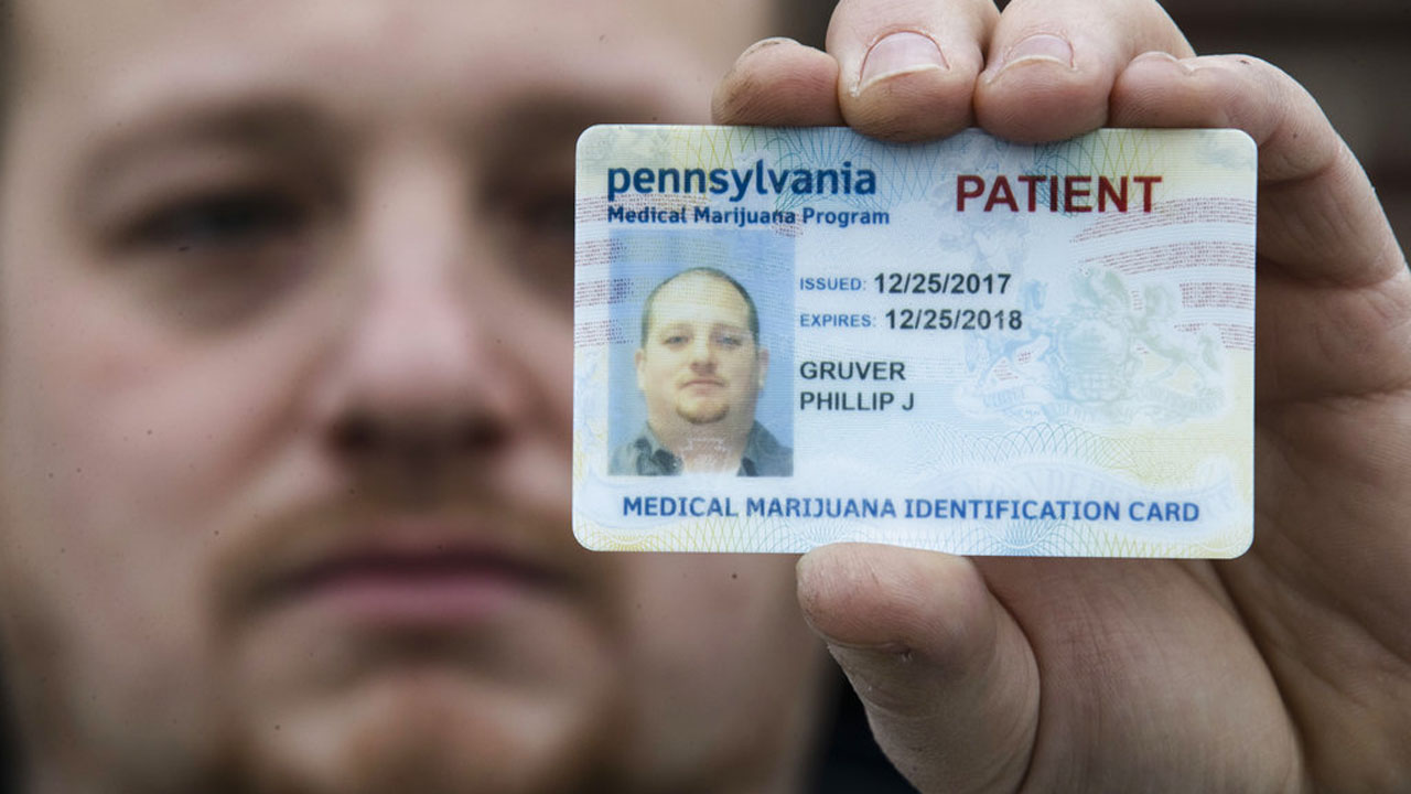 Medical Marijuana Guns_379945