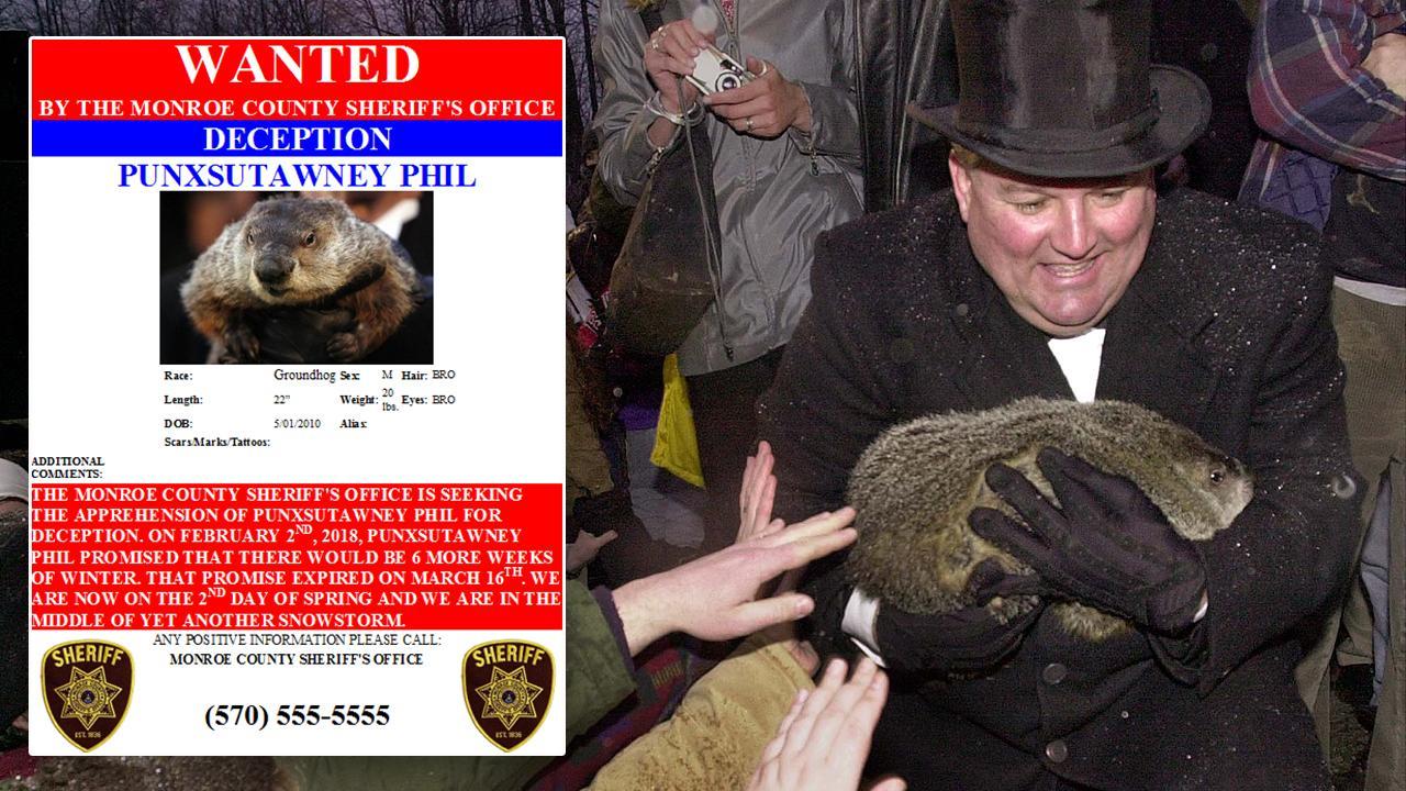 032618-groundhog-1280x720_404608