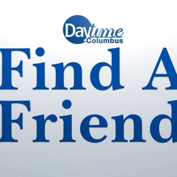 DT Tiles 1200x720 - Find A Friend_1522356385740.jpg.jpg