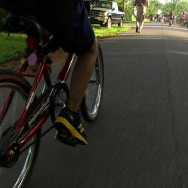 bike_401687