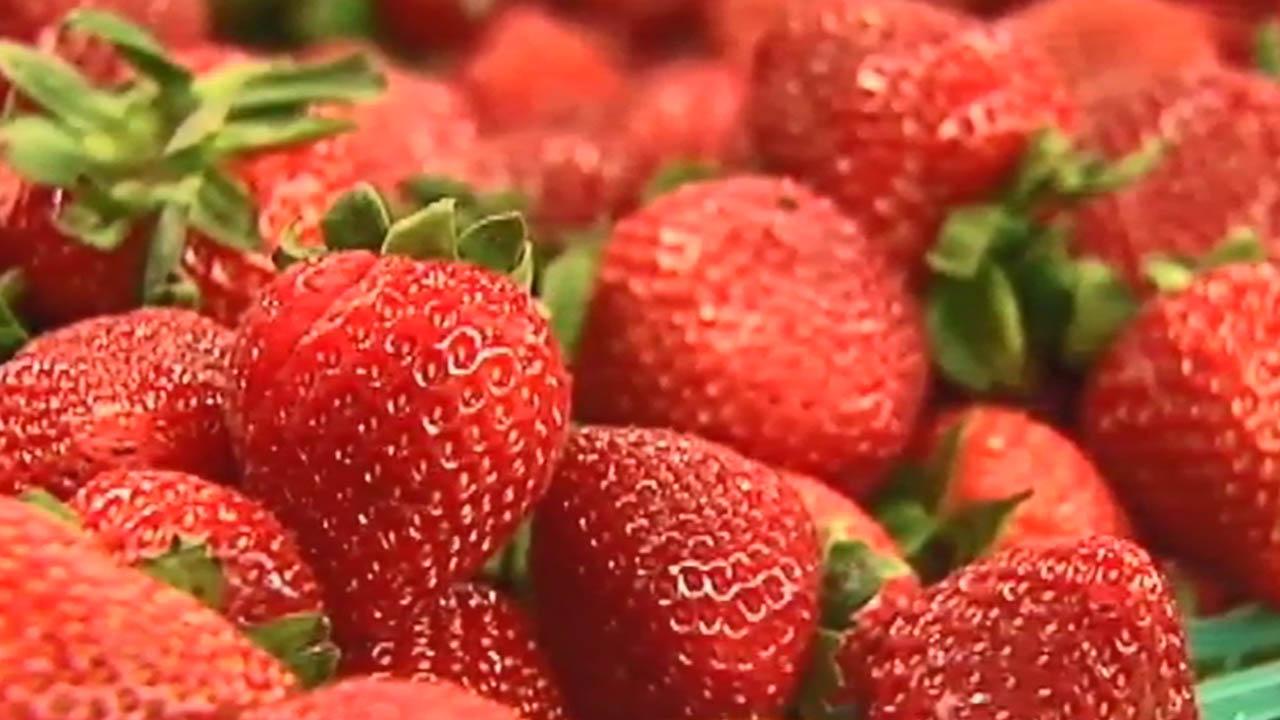 strawberry web_1523447552226.jpg.jpg