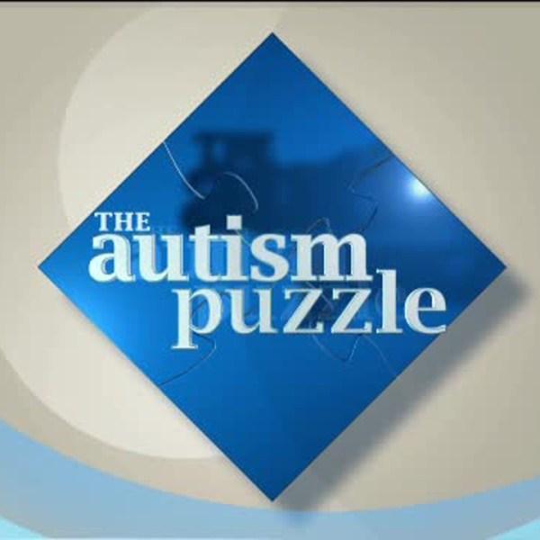 the autism puzzle logo big