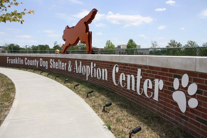 dog-shelter_183048