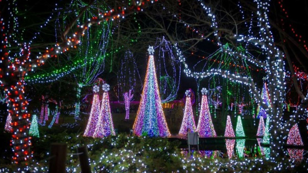 Columbus-Zoo-wildlights_1542393611047.JPG