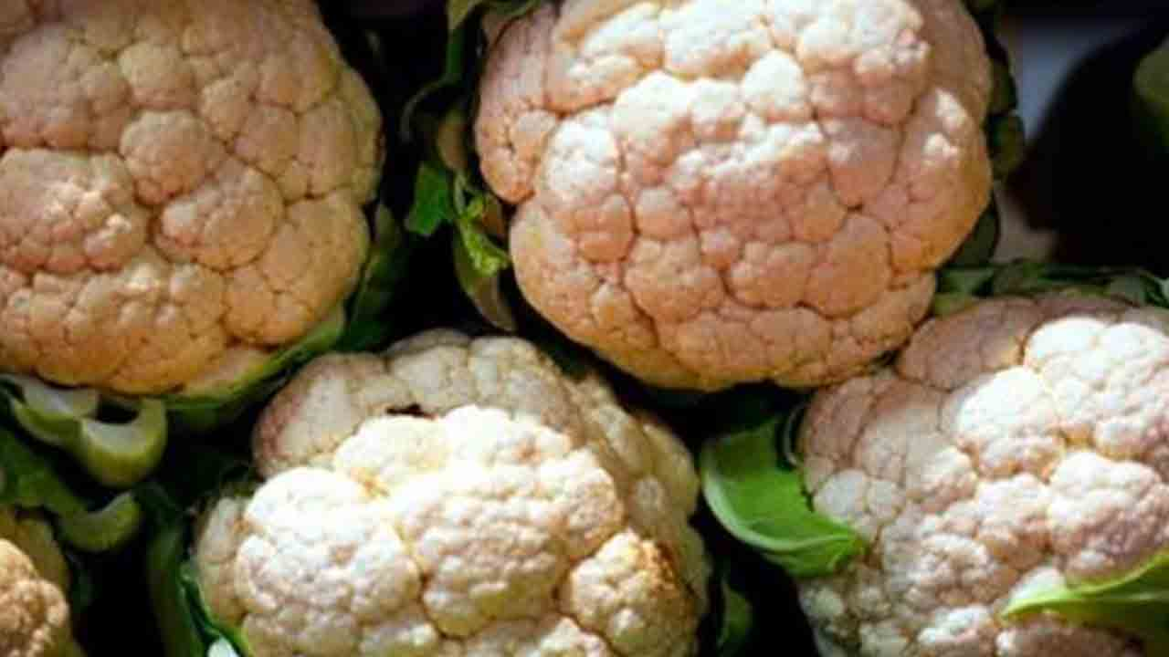 Cauliflower_1544824743496.jpg