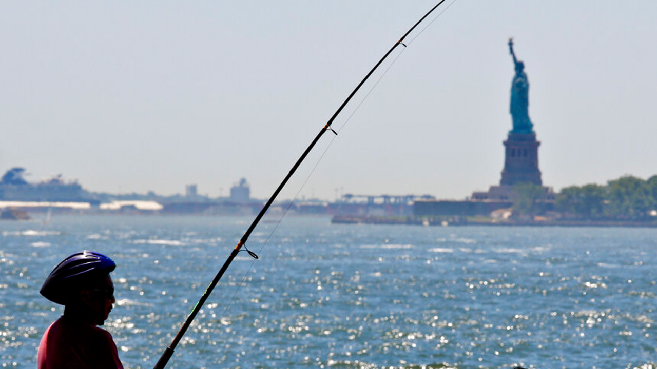 new york_1549992856354.jpg.jpg