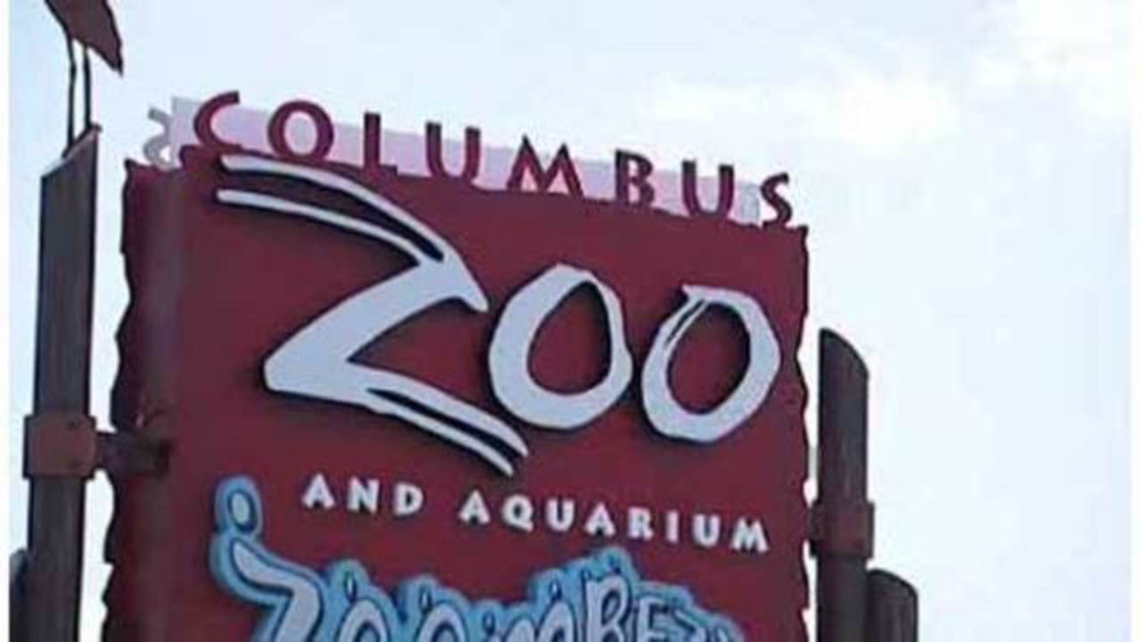 Free Columbus Zoo admission for mothers and grandmothers on Mother's Day
