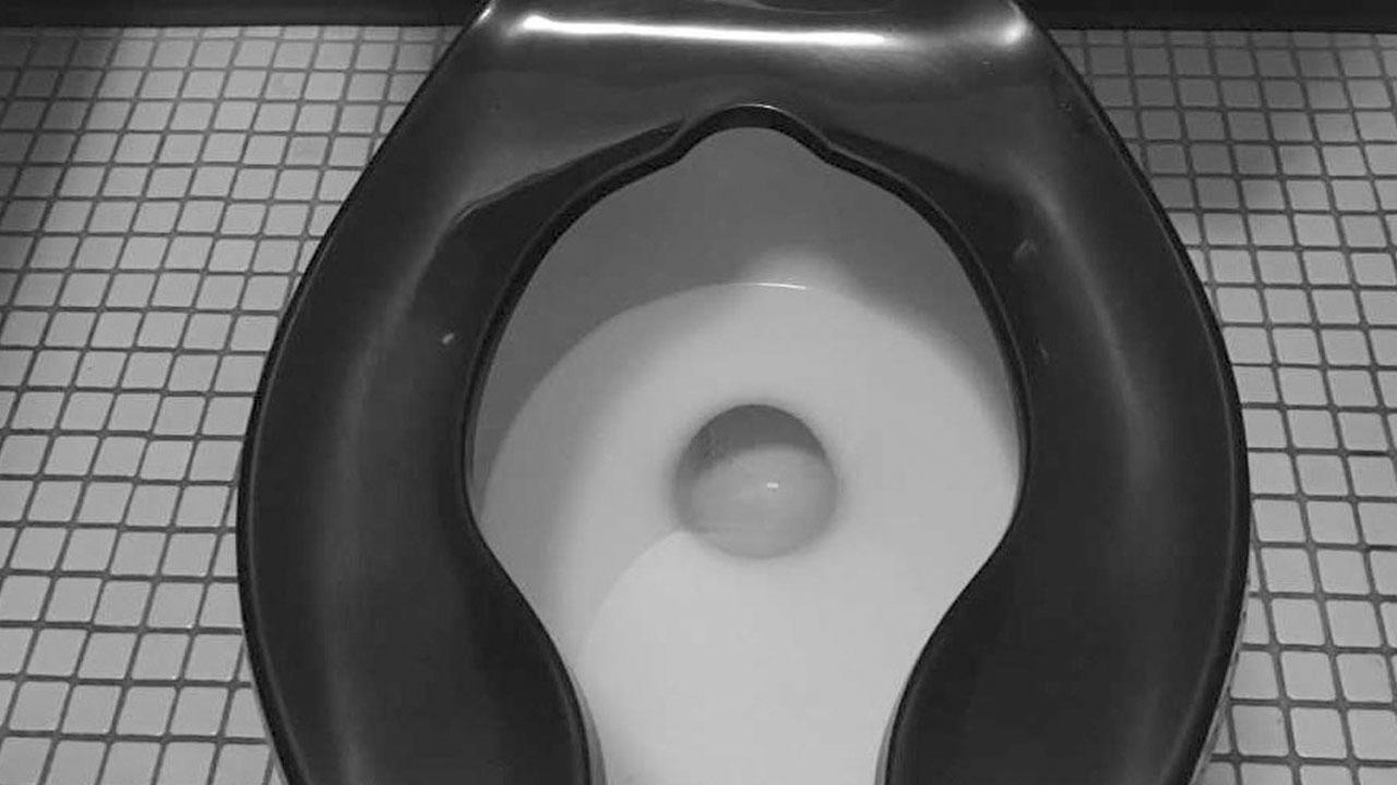 toilet_1559139295914.jpg