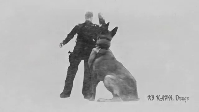 pickaway county sheriff's k9 canine