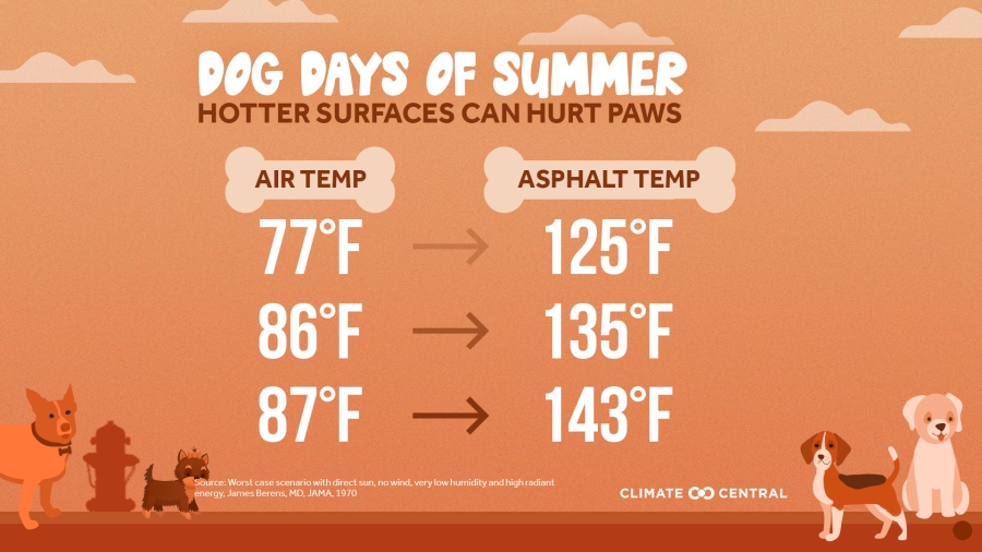 Climate Central dog days summer hot surfaces