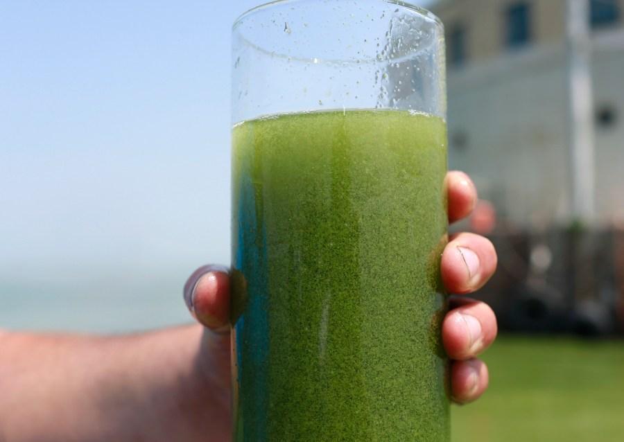 2014 Lake Erie Toledo algae algal bloom water glass