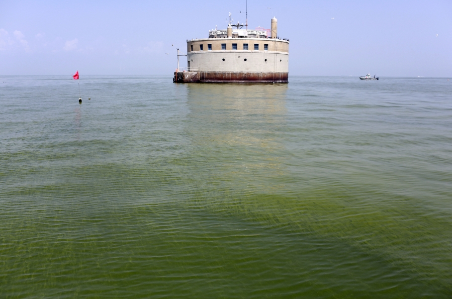 2014 Lake Erie Toledo algae algal bloom