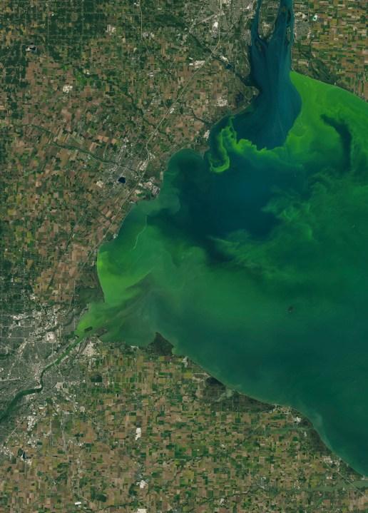 2017 Toledo Ohio algae algal bloom